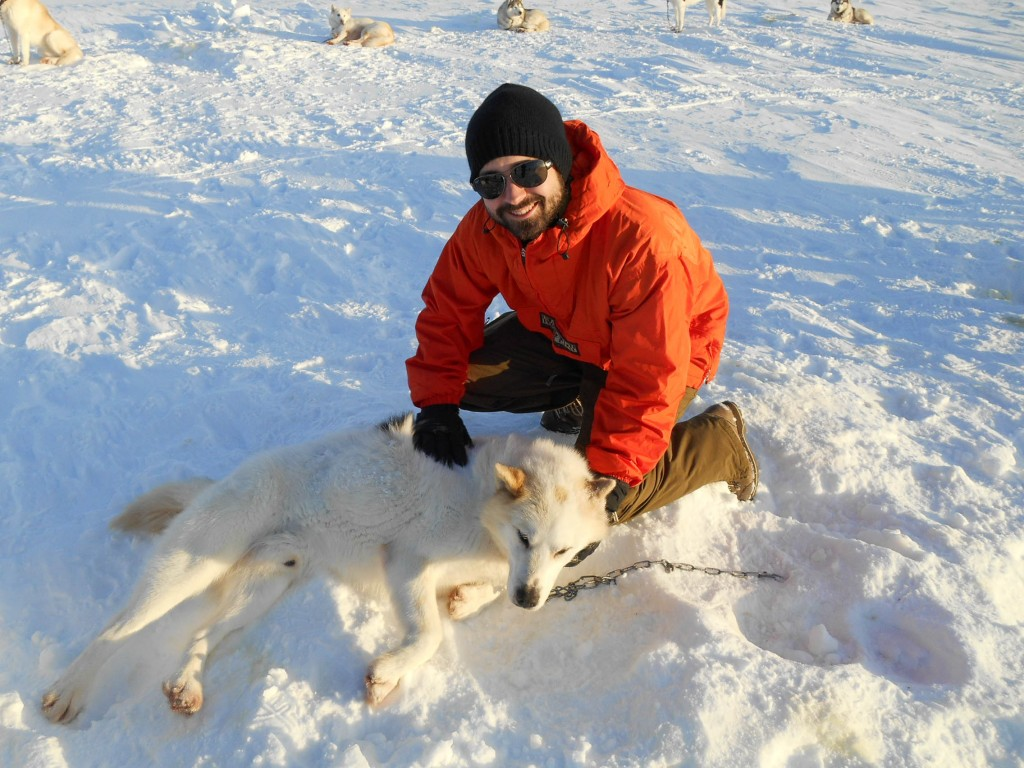 chien traineau seltun blue lagoon (14 sur 50)