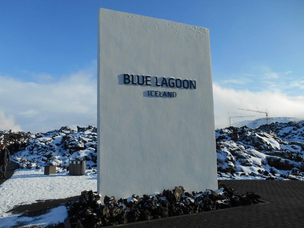 chien traineau seltun blue lagoon (41 sur 50)