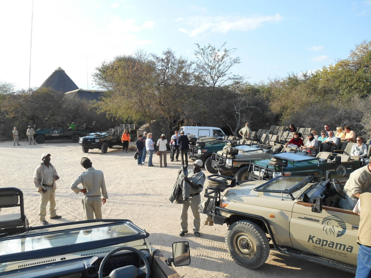 safari game drive (33 sur 38)