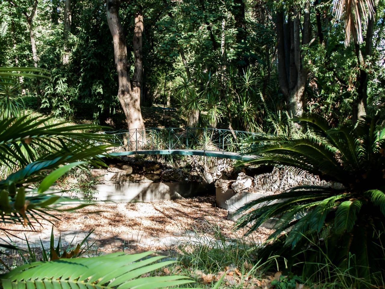 Lisbonne 4 balade dans le jardin botanique escapades etc for Camping le jardin botanique limeray