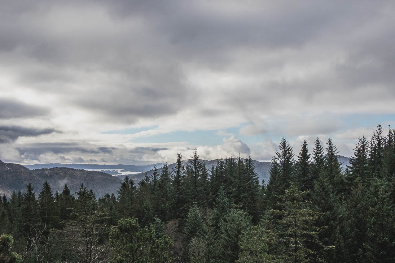 norvege visite bergen