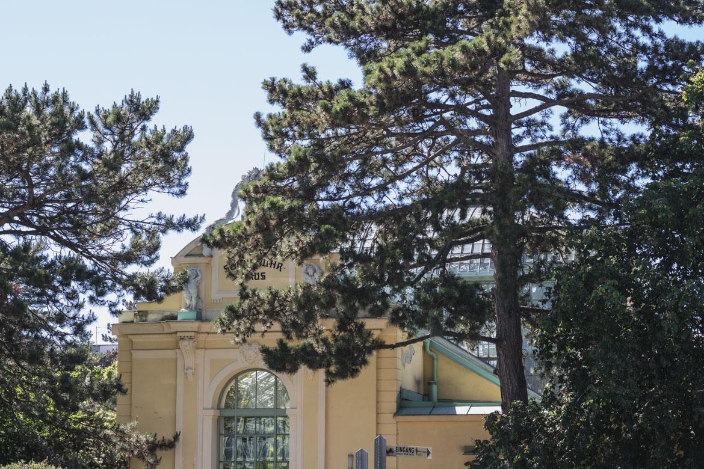 vienne journee chateau schonbrunn