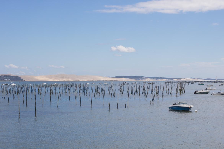 Bassin D Arcachon Une Echappee Belle Entre Foret Et Ocean