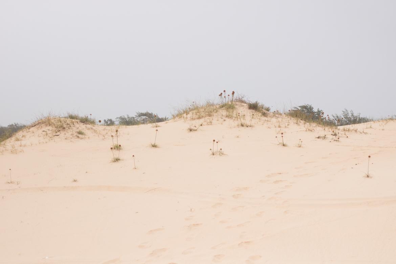 une semaine au senegal dunes paris dakar