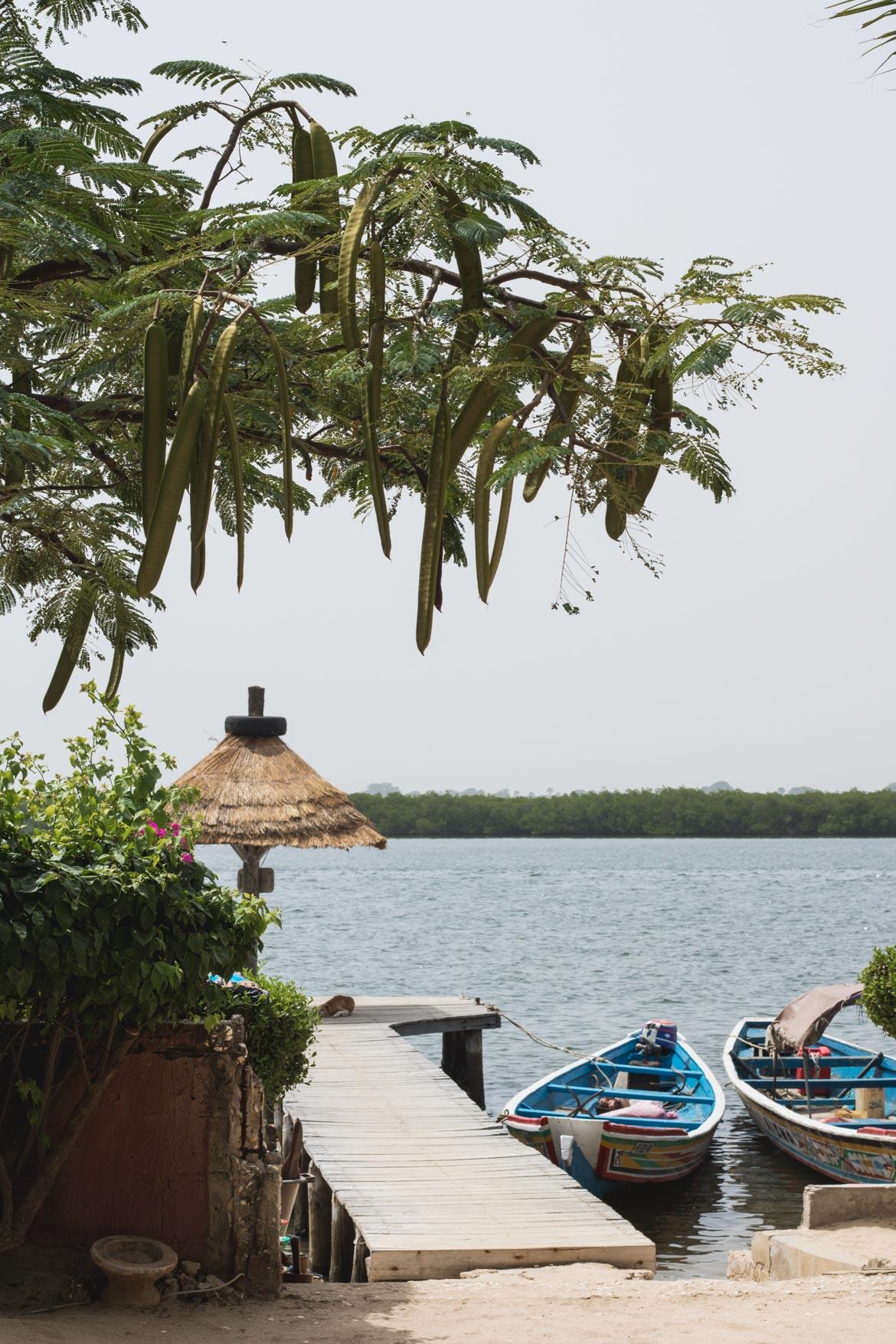 une semaine au senegal decouverte parc national Saloum iles