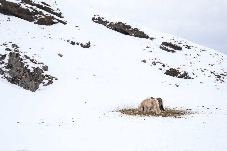 roadtrip hivernal sud islande kvernufoss