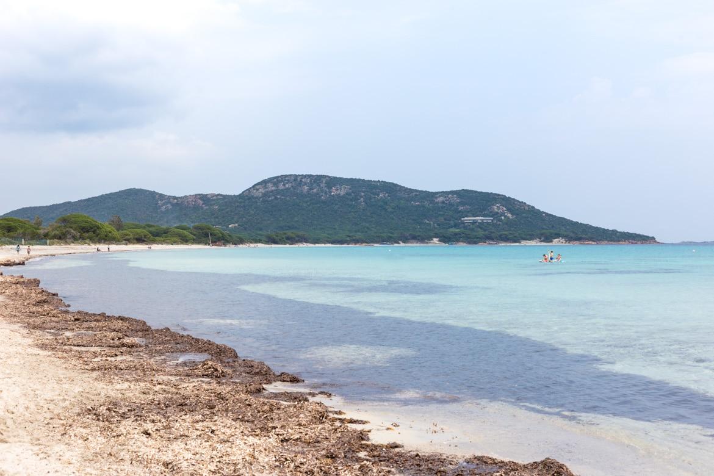 que faire en corse coups de coeur plage de Palombaggia